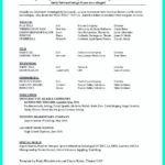 11 Beautiful Exotic Dancer Resume Example for Graphics
