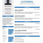 14 Top Infographic Resume Template Word Free Download with Pics
