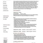 19 Awesome Pet Resume Template by Pictures