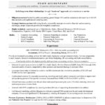 19 Nice Accounting Resume Examples with Ideas