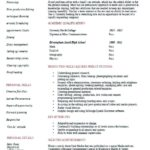 20 New Music Producer Resume with Graphics