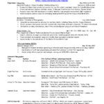 23 Cool Music Producer Resume for Pictures