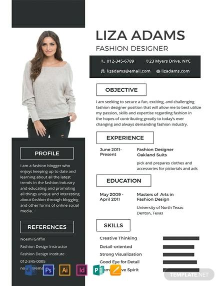 29 Top Blogger Resume Template for Pictures