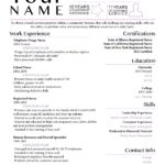 30 Cool Up To Date Resume for Ideas