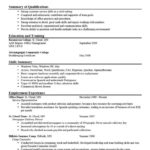33 Excellent Wordpad Resume Template with Images