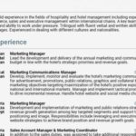 34 Top Concierge Job Description Resume with Graphics