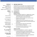 35 Lovely Accounting Resume Examples with Graphics