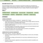 45 Top Accounting Resume Examples with Images