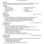 52 Lovely Forklift Operator Resume for Images