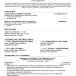 65 New New Grad Rn Resume With No Experience by Pictures