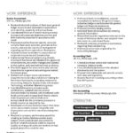 66 Inspirational Accounting Resume Examples for Images