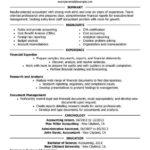 66 Nice Accounting Resume Examples for Pics