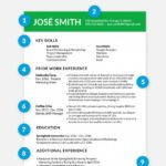 67 Inspirational What A Perfect Resume Looks Like by Pics