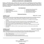 69 Excellent Accounting Resume Examples with Pictures
