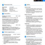 71 Top Accounting Resume Examples by Images