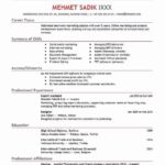 72 New Sample Resume Format For Domestic Helper by Gallery