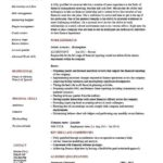75 Nice Accounting Resume Examples by Design