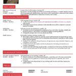80 Nice Accounting Resume Examples with Pics