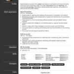 85 Nice Accounting Resume Examples for Graphics