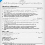 92 Awesome Entry Level Cyber Security Resume for Graphics