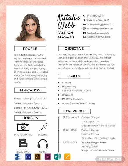 95 Best Blogger Resume Template by Pics
