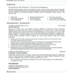 97 Best Small Business Owner Resume with Ideas