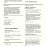 97 Stunning What A Perfect Resume Looks Like with Ideas