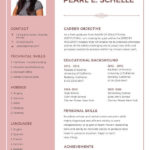 13 Great New Resume Format for Graphics