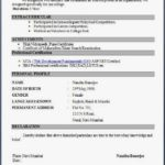 13 Nice Top 5 Resume Format by Graphics