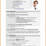 15 Best New Resume Format with Design