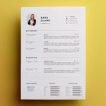 15 Cool Professional One Page Resume Template for Pictures