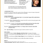 15 Inspirational English Cv Template by Images