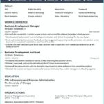 15 Lovely Best Executive Resume Templates 2018 by Graphics