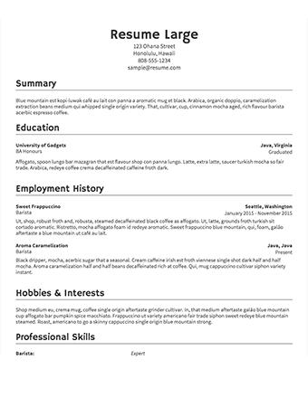 15 Lovely Sample Resume Templates for Design