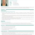 16 Awesome Professional Resume Format with Gallery