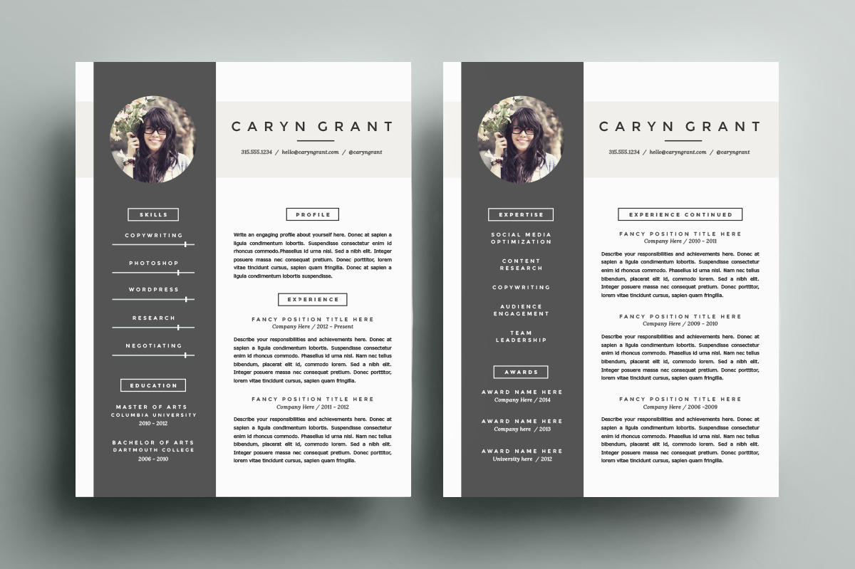 17 Best Amazing Cv Templates with Gallery