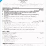 17 Best How Should My Resume Look for Gallery