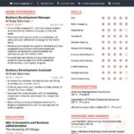 17 Excellent Best Executive Resume Templates 2018 for Ideas