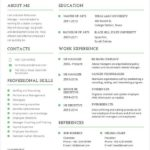 17 New Best It Resume Format with Pics