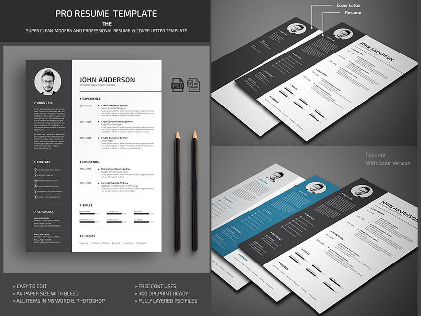 18 Great Free Microsoft Office Resume Templates by Pics