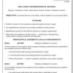 19 Excellent Professional Resume Format by Images