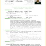 19 Top English Cv Template by Design