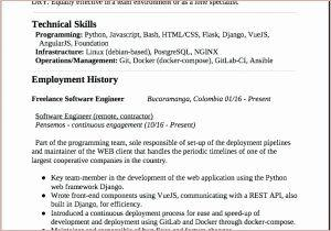 20 Nice Angularjs Resume Sample by Pics