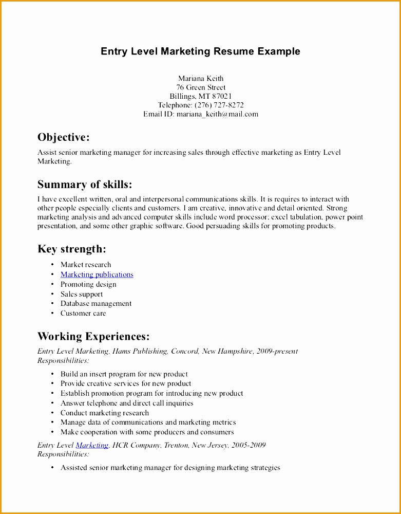 21 Beautiful Beginner Resume Template with Ideas