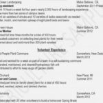 21 Excellent Dragon Resume Review by Pictures