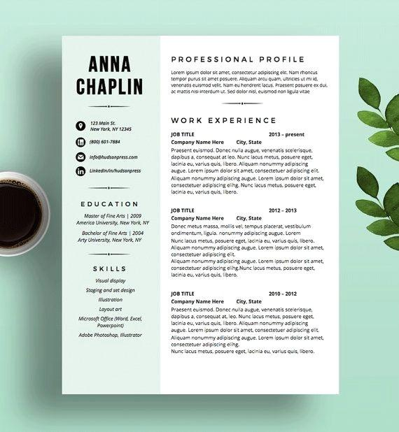 21 Great Modern Resume Sample for Pictures