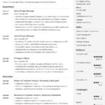 22 Nice Professional Looking Resume Template for Ideas