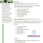 23 Awesome Updated Resume Format with Graphics