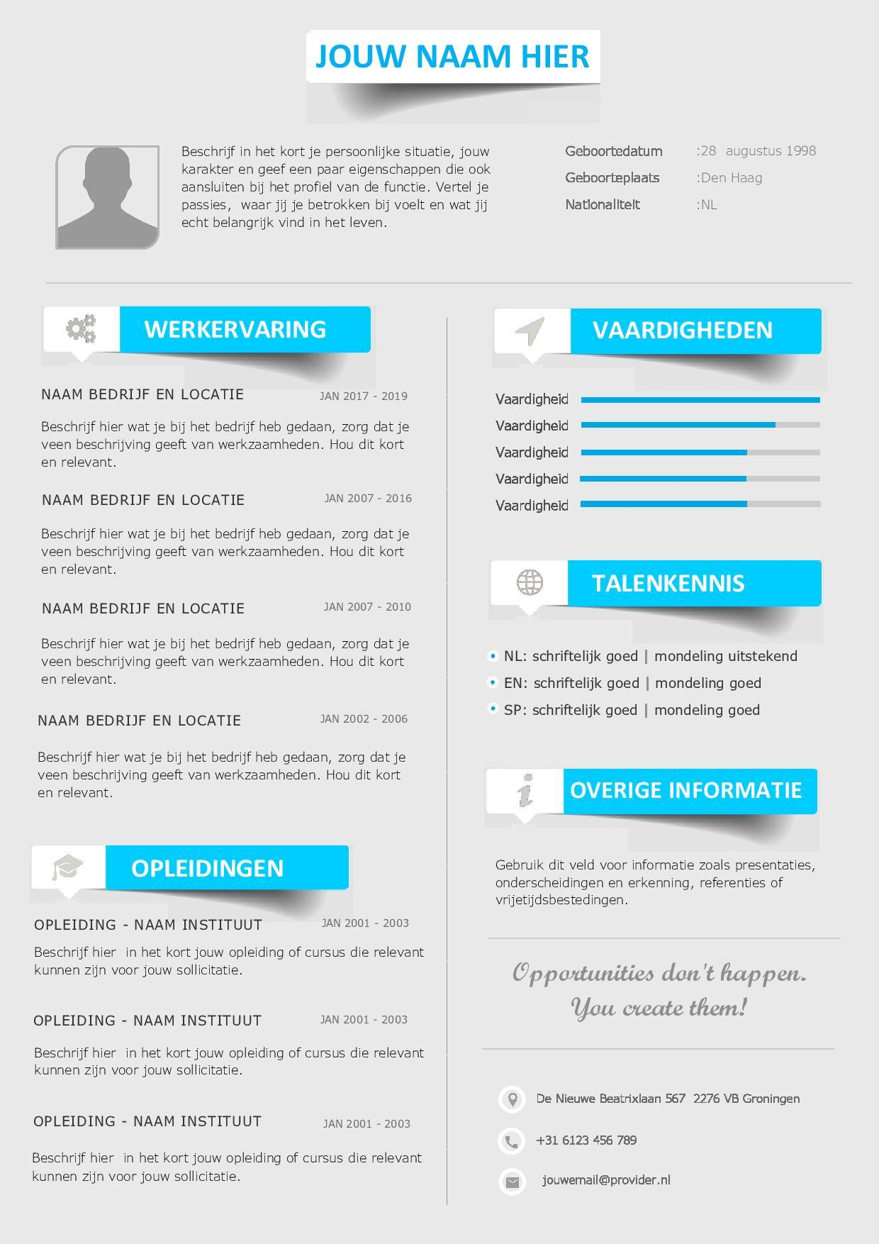 23 Stunning Cv Template Gratis for Pics