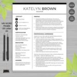 25 Best Teacher Resume Template with Gallery